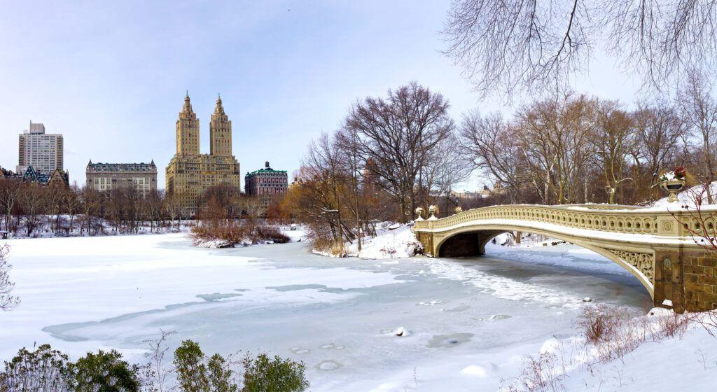 Capodanno a New York: Central Park innevata