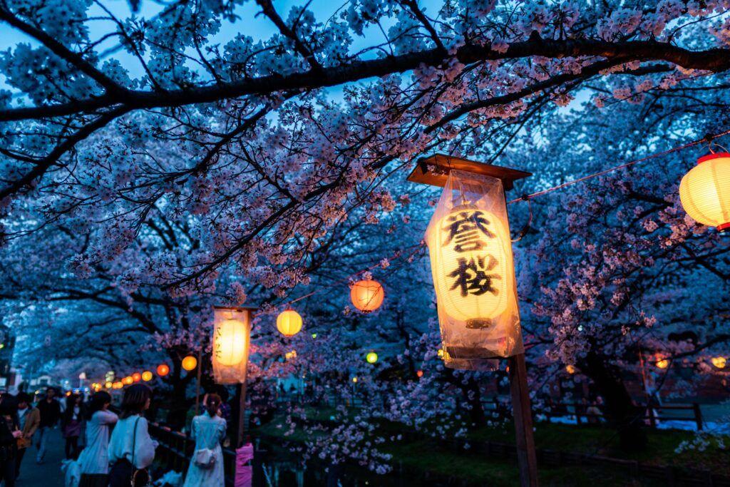 Hanami in Giappone