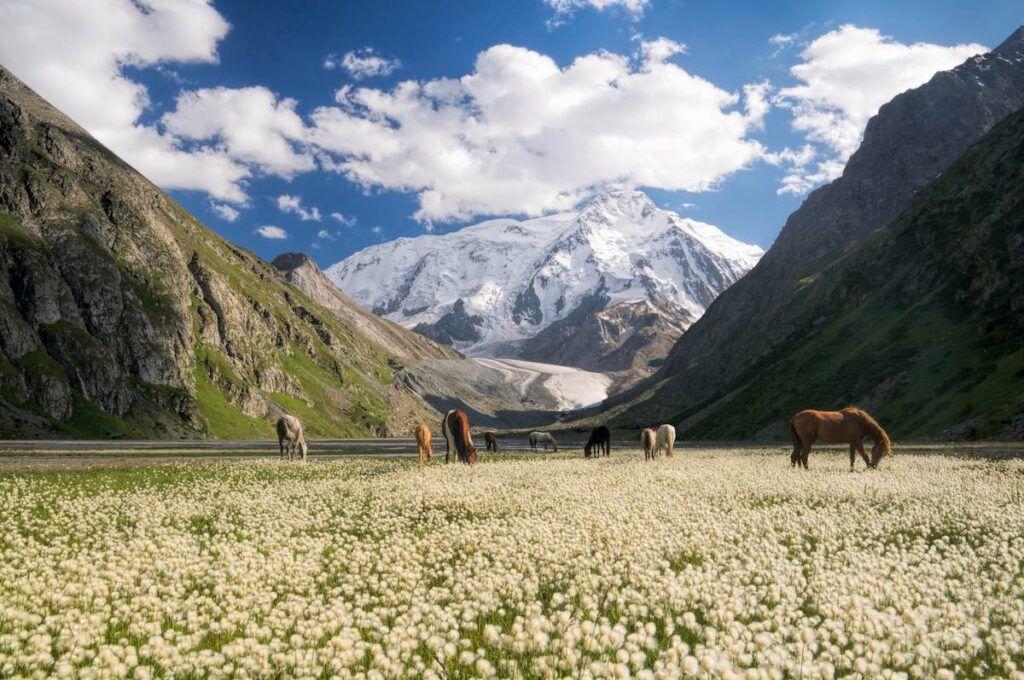 migliori destinazioni di viaggio: Kyrgyzstan