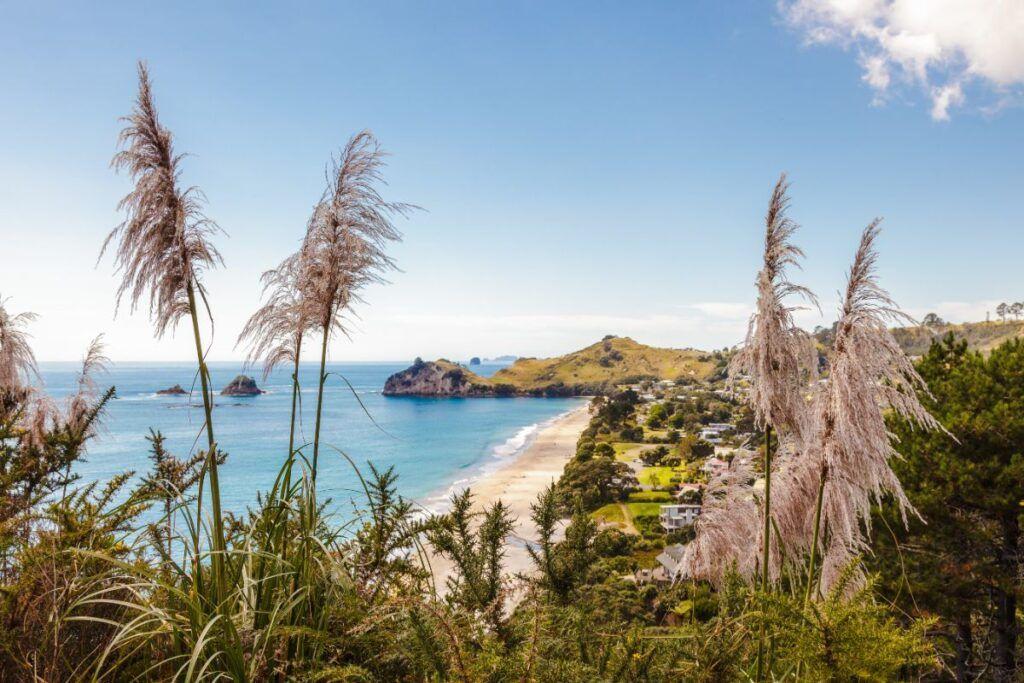 Viaggi per single: Nuova Zelanda